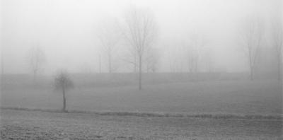 sad-landscape